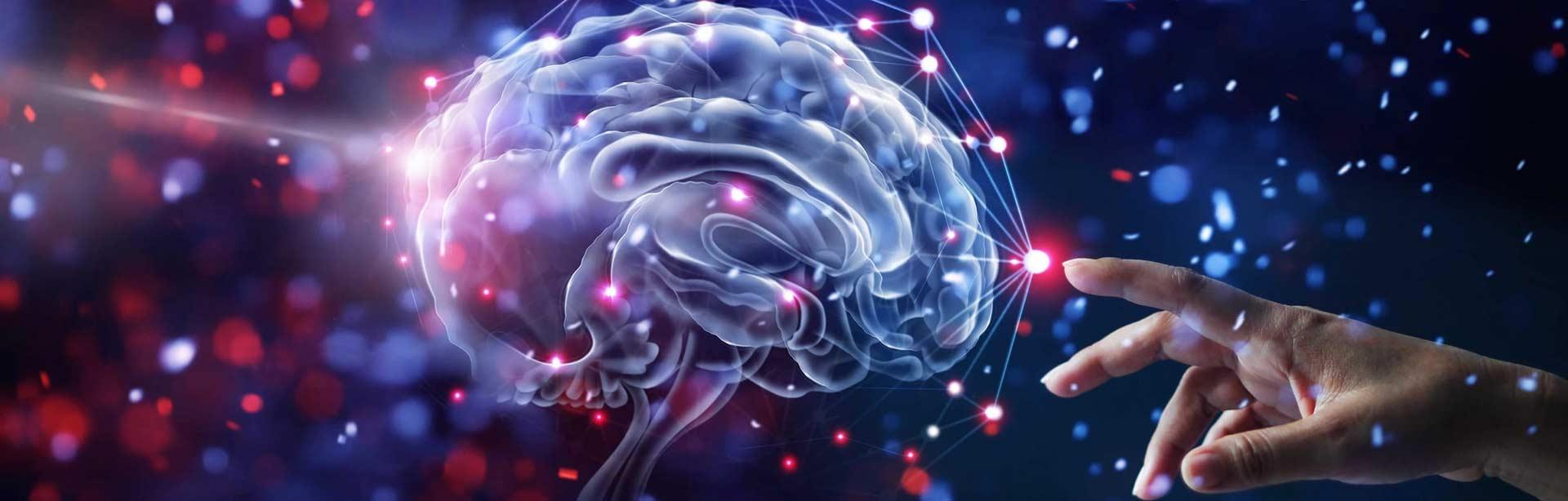 Nevro lingvistično programiranje